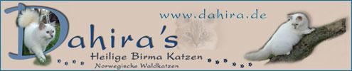 Dahira's Heilige Birmakatzen
